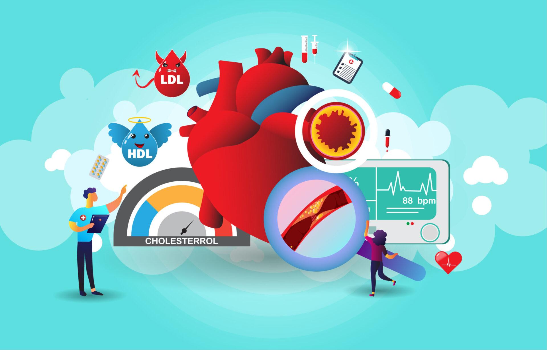 Studiile recente au demonstrat că există o relație directă între colesterol și morbiditatea și mortalitatea cardiovasculară.