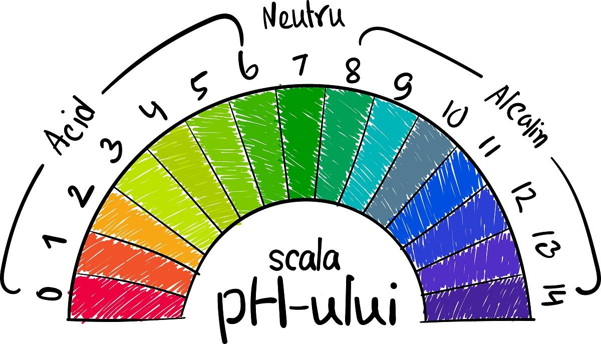 ce este ph-ul. scala ph-ului: de la 0 la 6 e acid, de la 6 la 8 e neutru, de la 8 la 14 e alcalin