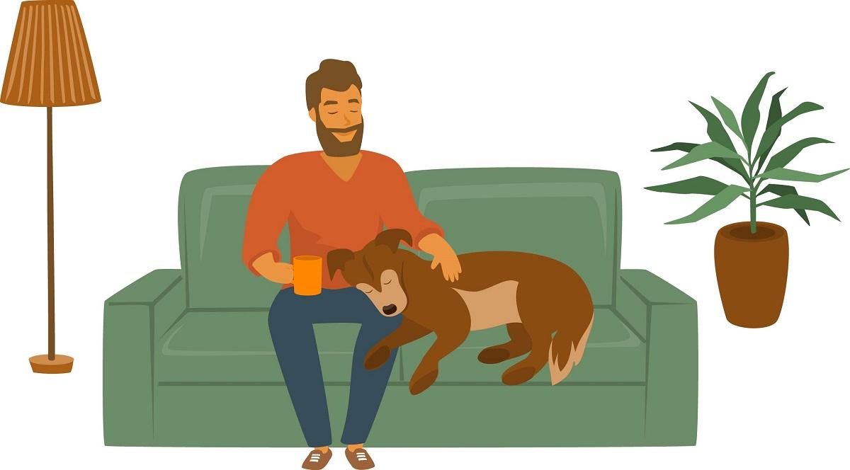 alergie la caini rase hipoalergene tratament. barbat cu cainele pe canapea