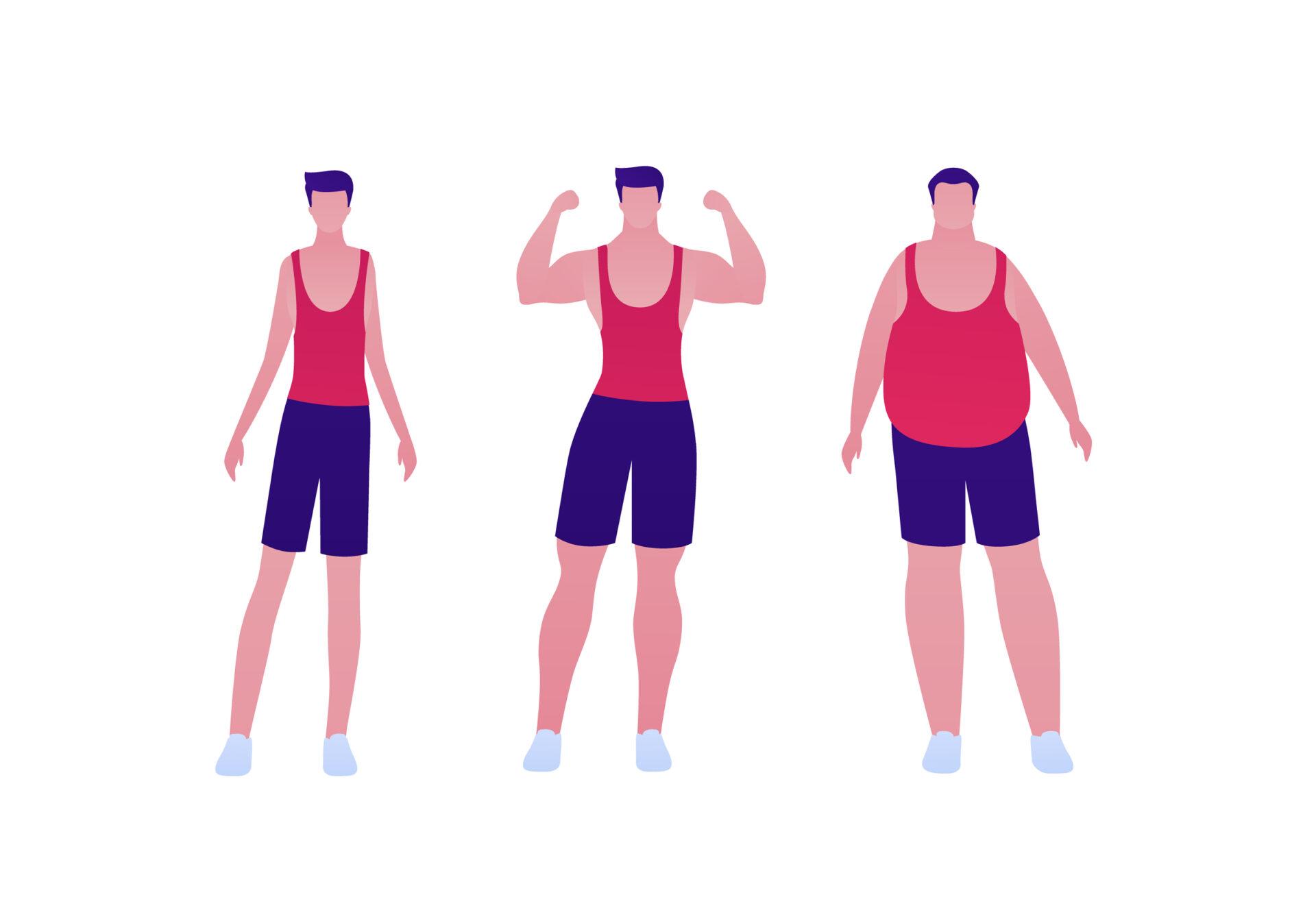Un proces natural de creștere de masă musculară durează de obicei minim 6 luni. Este un proces în care rezultatele trebuie întreținute prin sport constant de-a lungul vieții.