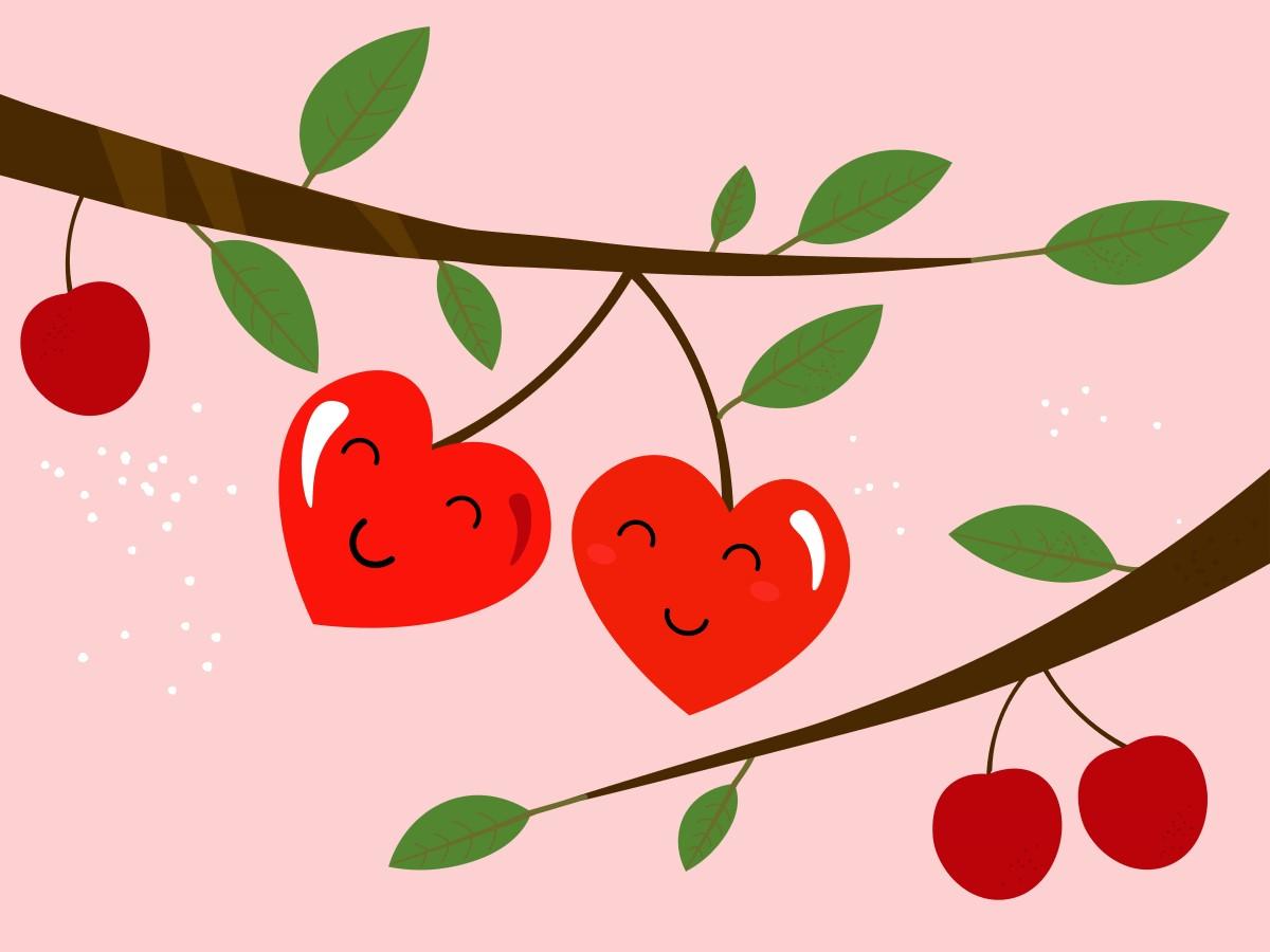 ciresele fructele pe placul inimii doua cirese in forma de inima