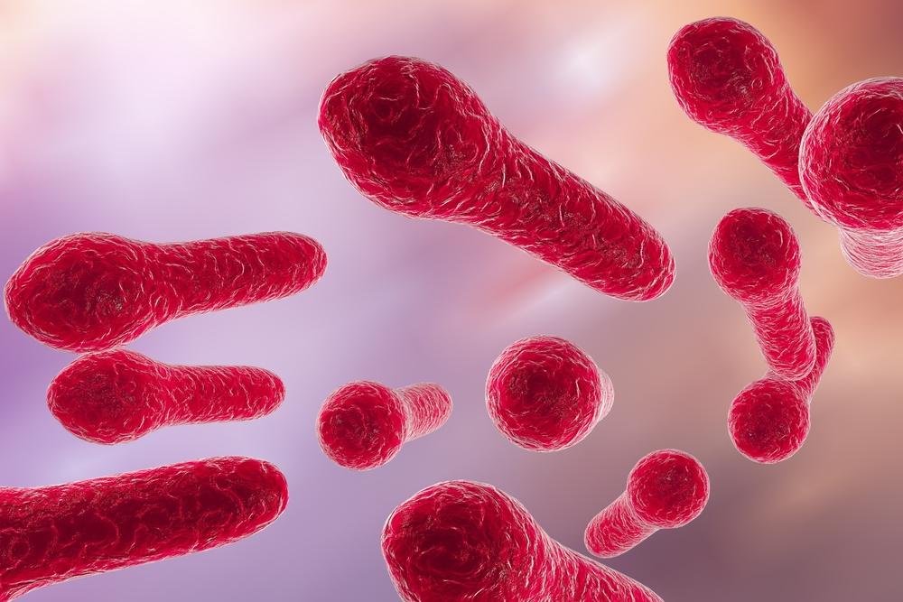 bacterie tetanos
